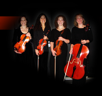 Willow String Quartet Pic